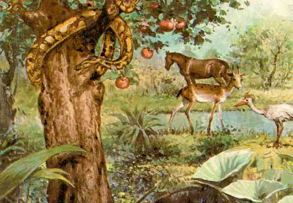 Pre iniciaci n cristiana 5 for Cancion en el jardin del eden