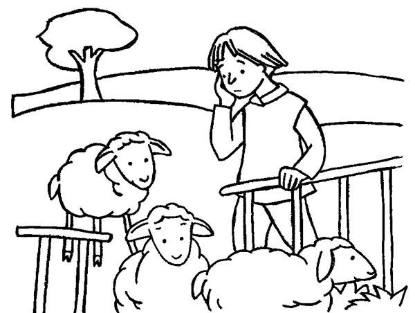 Historias Bíblicas para Niños # 16